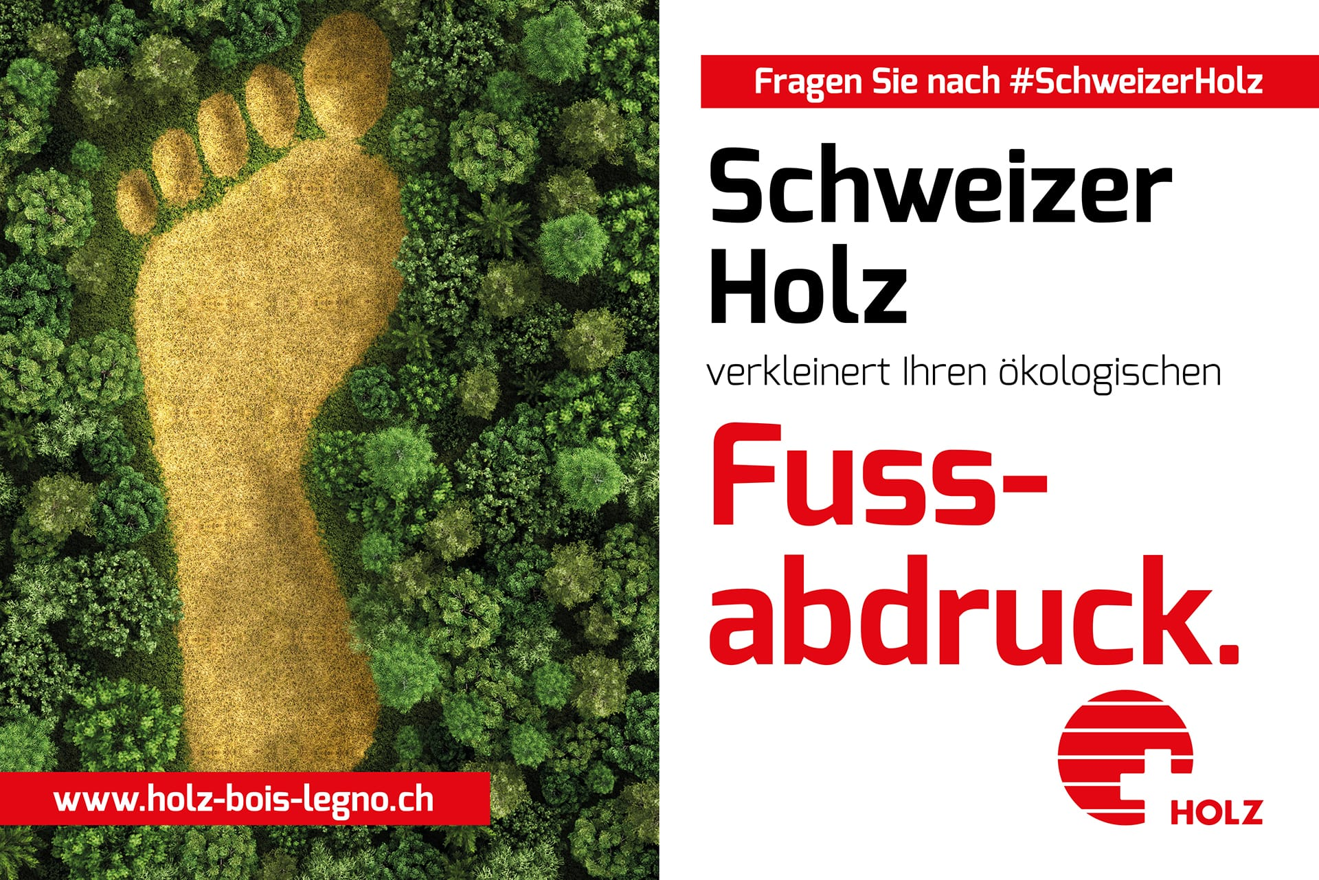 Schweizer Holz verkleinert Ihren ökologischen Fussabdruck
