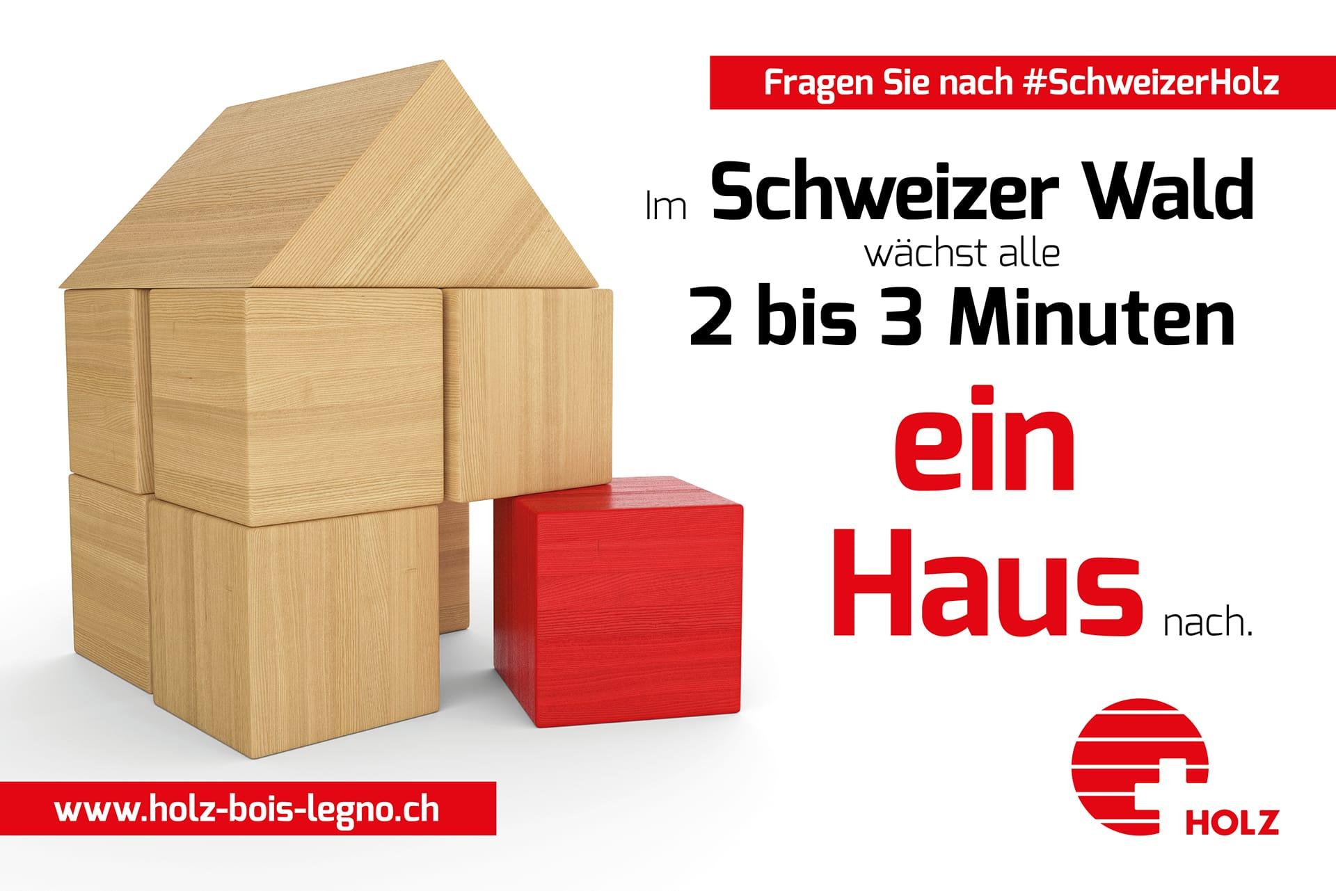 Im Schweizer Wald wächst alle 2–3 Minuten ein Haus nach.