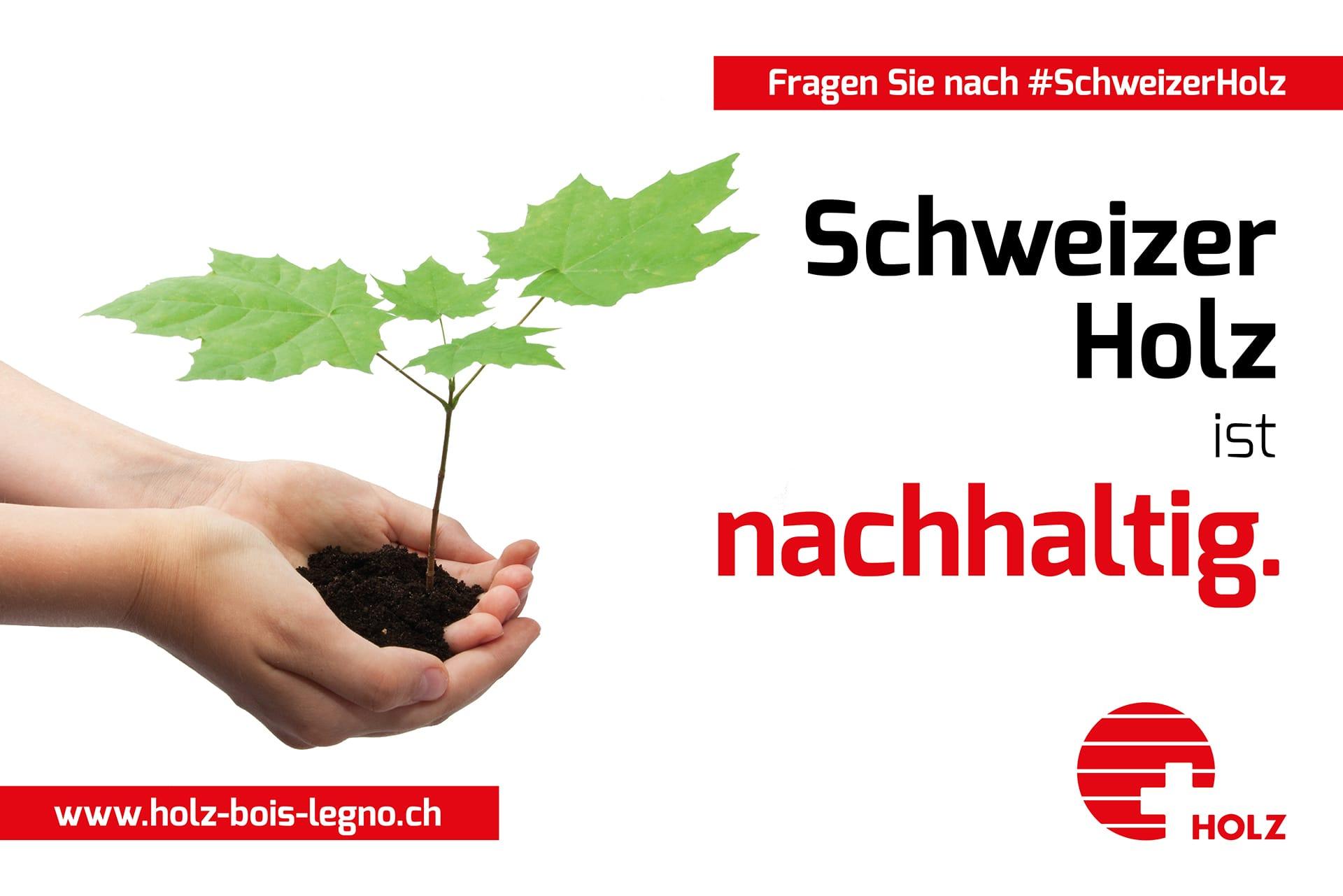 Schweizer Holz ist nachhaltig